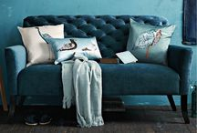Chairs & Couches & Cushions