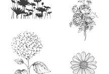 SU Best of flowers
