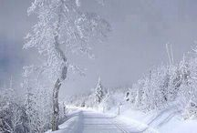Scenery of the winter