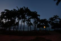 Hawaii / Dec. 2nd.2013 -