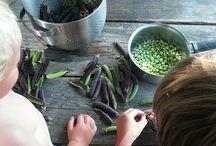 Groenten 3h4 / Zoek foto's waarin groentespreekwoorden/uitdrukkingen (10 stuks)
