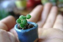 Teeny tiny. / Small.