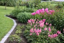 Home - Garden