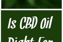 CBD Oil Information / Information about all things CBD oil, CBD salve, CBD tinctures, CBD capsules, CBD edibles, CBD vape, and CBD oil for pets.
