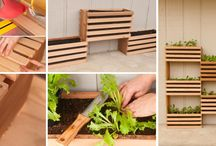Garden buildy things / Building grow boxes