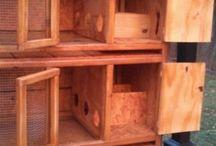 Gaiolas de madeira