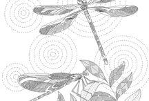 libellula