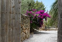 Ibizan house & garden