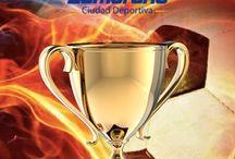 Copa Sumandonos 2015