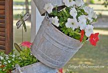 flower garden / by Melissa Rice Cox