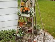 Gardening / by Penny Calhoun