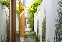 new house - garden