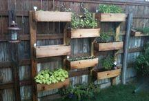 Backyard ideas / by Vickie Williamson