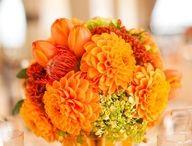 Orange & Pink Wedding / Orange / tangerine / pink wedding theme color