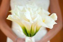 Bouquet Ideas / by Angsana Laguna Phuket