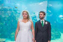 Toledo Zoo Aquarium Ohio Wedding by Mary Wyar Photography / Toledo Zoo Ohio Wedding Photos by Mary Wyar Photography marywyar.com