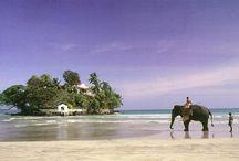 Srilanka-Maldivler Turu