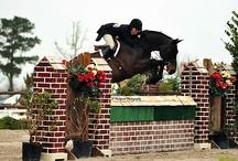 Equestrian  / by Brittany Douglas
