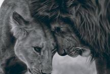 LionGurl