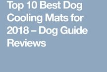 Dog Bed / Best dog beds for your pooch, including ones for old, small, and large dogs. Every dog deserves a comfy, cushy bed to sleep on, and our top pick is Orthopedic Memory Foam dog bed.