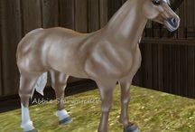 Sso horses I own