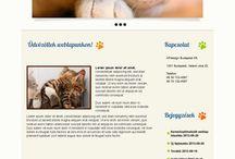 Website Design / Weboldal terveim, szép weblapok, webdesign, website design.
