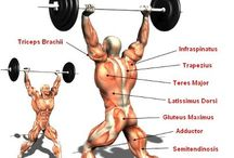Clean & Jerk / Great examples of this critical weightlifting move.