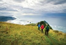 Oregon Coast Hikes