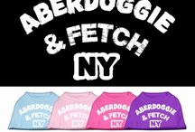 Pooch Humorous Sayings Apparel / Great selection of Dog Clothingwith the most adorable cute sayings and just the right touch of humor for you sweet dog. Available in many colors and sizes at fantastic prices.