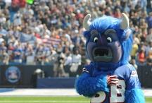 Buffalo Bills  / I am the Buffalo Bills #1 Fan!!! <3 / by Missy Campbell