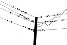 Trees & Bird Wall Decals