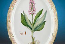 Flora Danica / Copenhagen dinnerware