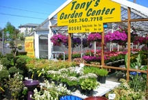 Garden Companies / Garden Centers and Seed companies I do business with and recommend to others or that others have been highly recommended to me.
