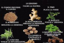 erbe piante semi radici