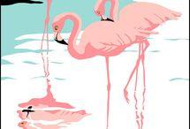 Flamingoooos