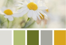 Color Palettes / In love with these lovely colors!