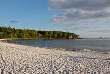 Beautiful Maine / by Carol Hewitt