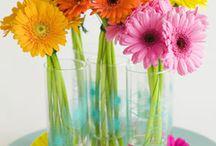My favorite flower ❤️❤️❤️