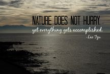 Inspirational Photo Quotes