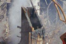 9/11 Reality Check