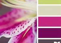color schemes / by Sarah Anne Semke