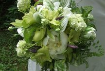 Flowers - Green (Flori - Verde)
