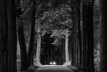 Inspirasjon / Black and white