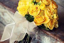 Yellow / makes me happy yellow