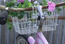 i love my bicycle  / by Teka Mcgill