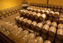 Curiosidades Vinícolas / Datos, hechos y curiosidades sobre el mundo del vino.