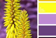 Värit
