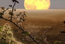 Lunar and Solar Pics / by Michelle S