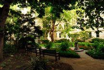 secret garden - geheimer Garten - titkos kért