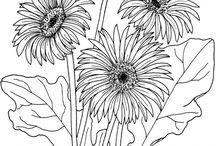 bloemen / kransen